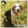 Wendy *