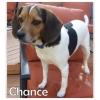 Chance *