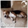 Douglas *