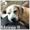Minnie II *