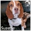 Suzette *