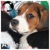 Ashleigh *