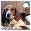 Sam I Am *