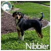 Nibbler *