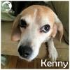 Kenny *