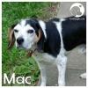 Mac *
