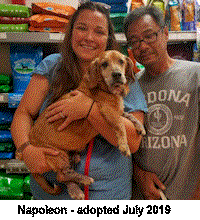 napoleon adopted AARB